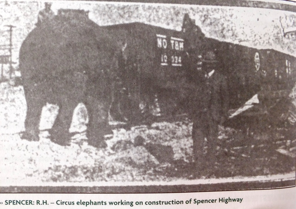 Christy's elephants help build the Spencer Highway