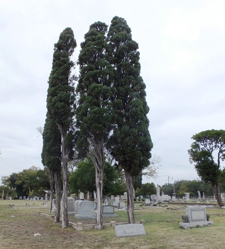 0292 St Peter Claver Cemetery